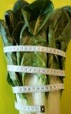 Folhas frescas e orgânicas da acelga com uma fita métrica A dieta e o peso perdem o conceito foto de stock royalty free