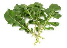 Folhas frescas verdes do rucola isoladas no fundo branco Salada ou rúcula de Rocket Foto de Stock