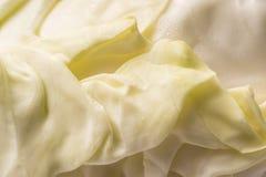 Folhas friáveis da couve, fundo ascendente e completo do fim do quadro fotos de stock royalty free