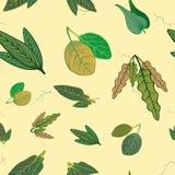Folhas fundidas do deserto ilustração royalty free