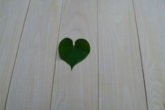 Folhas Heart-shaped fotos de stock