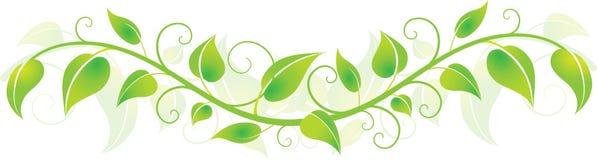 Folhas horizontais verdes Imagem de Stock Royalty Free