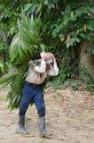 Folhas levando do pobre homem em sua cabeça Foto de Stock