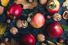 Folhas, maçãs e nozes de outono na placa azul Imagens de Stock