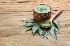 Folhas medicinais do neem com pasta Foto de Stock Royalty Free
