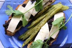 Folhas mexicanas do cacto para cozinhar Foto de Stock