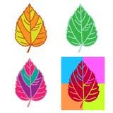 Folhas multicoloridos ajustadas imagens de stock