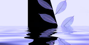 Folhas na água Fotos de Stock Royalty Free