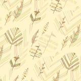 Folhas na terra Fotos de Stock Royalty Free