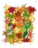 Folhas nas cores do outono ilustração royalty free