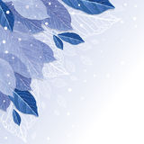 Folhas no fundo do inverno da geada Imagem de Stock
