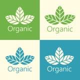 Folhas orgânicas Logo Illustration ecológico do vetor ilustração stock