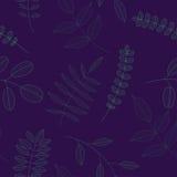 Folhas para o teste padrão Fotos de Stock