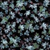 Folhas prateadas brilhantes no fundo preto Imagem de Stock Royalty Free