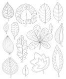 Folhas que colorem para adultos Fotografia de Stock