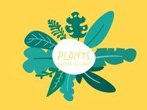 Folhas rachadas, palma, watercolour tropico da estação de mola da floresta da banana, foto de stock royalty free