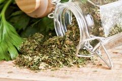 Folhas secadas do aipo Imagem de Stock Royalty Free