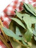 Folhas secadas do louro Foto de Stock Royalty Free