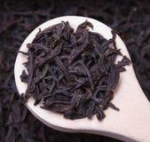 Fraco do chá preto secado Imagens de Stock Royalty Free