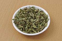 Folhas secadas Verbena do limão Imagem de Stock