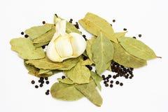 Folhas secas do louro e pimenta preta Imagens de Stock Royalty Free