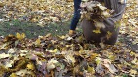 Folhas secas do material da mulher no saco material no quintal da casa Inclinação para baixo 4K video estoque