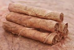 Folhas secas do tabaco Fotos de Stock