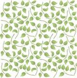 Folhas sem emenda do teste padrão Fotografia de Stock Royalty Free