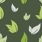 Folhas sem emenda do teste padrão Imagem de Stock Royalty Free