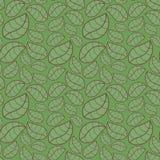 Folhas sem emenda do verde do fundo Ilustração Stock