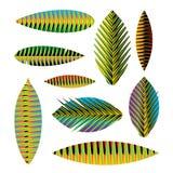 Folhas tropicais abstratas ajustadas Foto de Stock Royalty Free