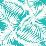 Folhas tropicais da árvore da selva do teste padrão da camuflagem Fotografia de Stock