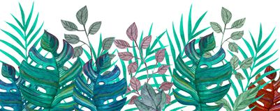Folhas tropicais Desenho da aguarela Cor verde fotos de stock royalty free