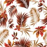 Folhas tropicais do teste padrão sem emenda da palmeira Foto de Stock