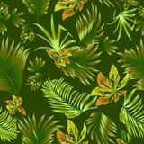 Folhas tropicais do teste padrão sem emenda da palmeira Fotografia de Stock Royalty Free