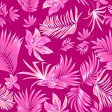Folhas tropicais do teste padrão sem emenda da palmeira Imagem de Stock Royalty Free