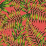 Folhas tropicais verdes de vida do fundo coral ilustração stock