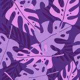 Folhas tropicais violetas Foto de Stock
