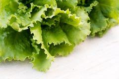 Folhas verdes da alface Folhas da alface no fundo de madeira Alface fresca na mesa de cozinha Alimento biológico saudável Imagens de Stock