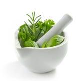 Folhas verdes da erva em um pilão branco imagens de stock