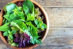 Folhas verdes da salada misturada Imagem de Stock