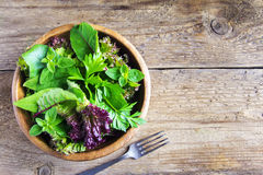 Folhas verdes da salada misturada Imagens de Stock