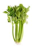 Folhas verdes do aipo Imagens de Stock