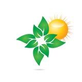 Folhas verdes Elemento do Web do vetor etiqueta Fotos de Stock