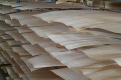 Folheado de madeira para a produção da madeira compensada Imagens de Stock