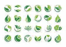Folheia a natureza do logotipo, agricultura, orgânica, planta, bio, eco, projeta o grupo verde do ícone da folha fotos de stock