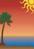 Folheto, cartaz ou inseto tropical do estilo com palmeira e sol Foto de Stock