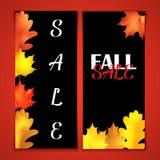 Folheto da venda do outono Placa preta com rotulação do giz Folhas realísticas do carvalho e do marple Fotos de Stock
