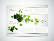 Folheto de Eco Foto de Stock