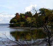 Foliage湖视图 免版税库存照片